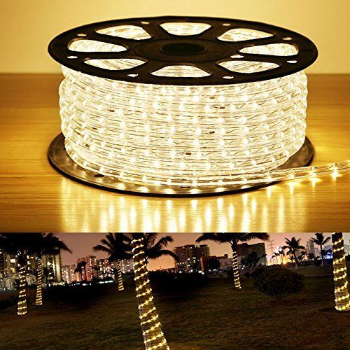 New Led 110v Led Rope Light Kit 100 Ft Warm White Bright