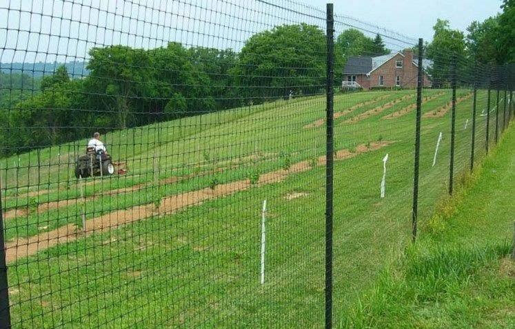 New Deer Fence 7 5 X 100 Ft Plastic Df75100 Uncle Wiener